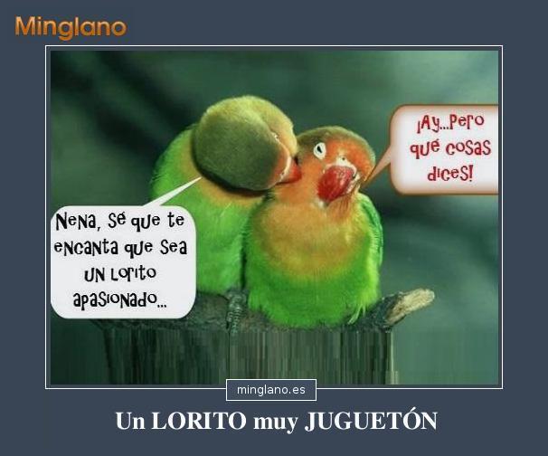 CHISTES GRÁFICOS de LOROS