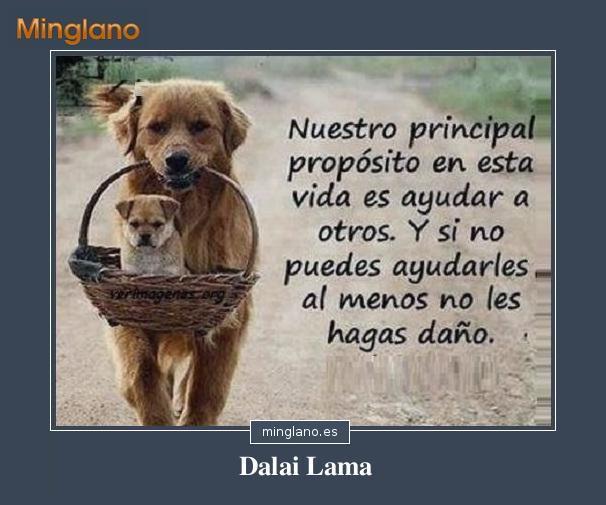 Frases del Dalai Lama sobre ayudar a los demás