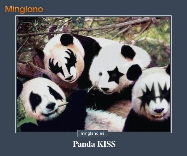 FRASES con IMÁGENES de OSOS PANDA