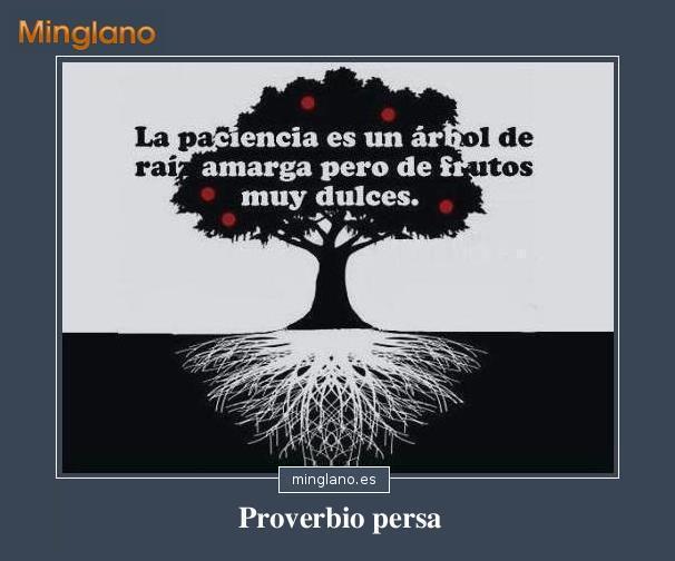 Proverbio árabe sobre la paciencia