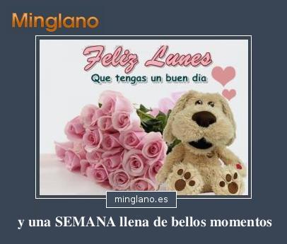 FFRASES BONITAS para DESEAR FELIZ LUNES