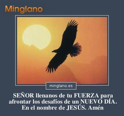 FRASES para PEDIR FUERZAS a DIOS