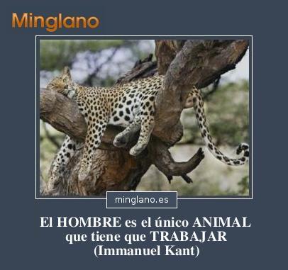 FRASES de IMMANUEL KANT sobre el HOMBRE