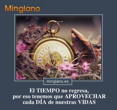 Frases sobre NO MALGASTAR el TIEMPO