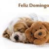 FRASES BONITAS para HOY DOMINGO
