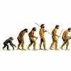FRASES con IMÁGENES sobre la EVOLUCIÓN HUMANA