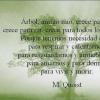 FRASES para el DÍA MUNDIAL del ÁRBOL