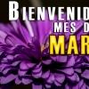 FRASES para RECIBIR el MES de MARZO