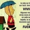 FRASES de la VIDA HAY que VIVIRLA