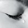 FRASES sobre los SENTIMIENTOS y las EMOCIONES